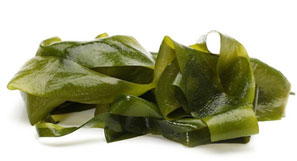 Cabbage sea