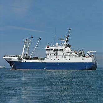 Свежемороженая рыба оптом от АО «ЯМСы»