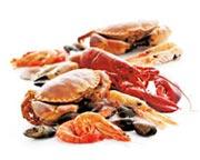 Морепродукты оптом от производителей