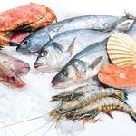 Рыба оптом в Москве