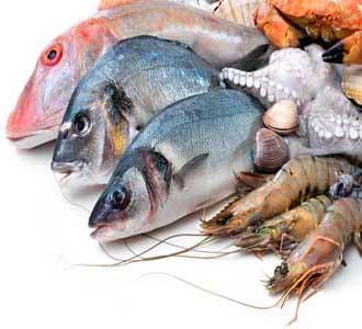 Оптовый рыбный рынок